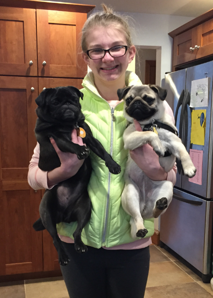 Bella holding two pugs, a black pug and a tan pug.
