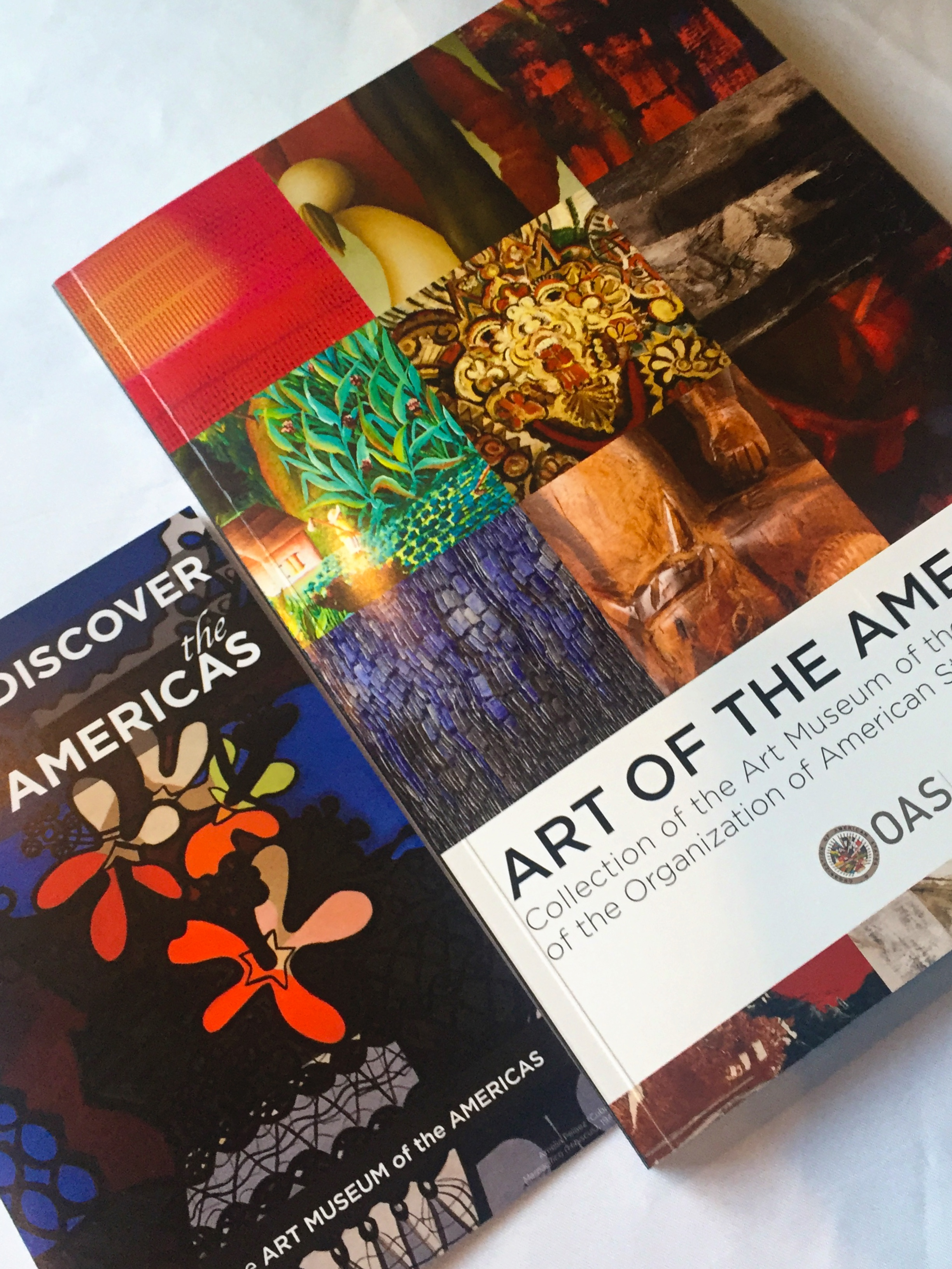 Art Museum of the Americas Book Launch