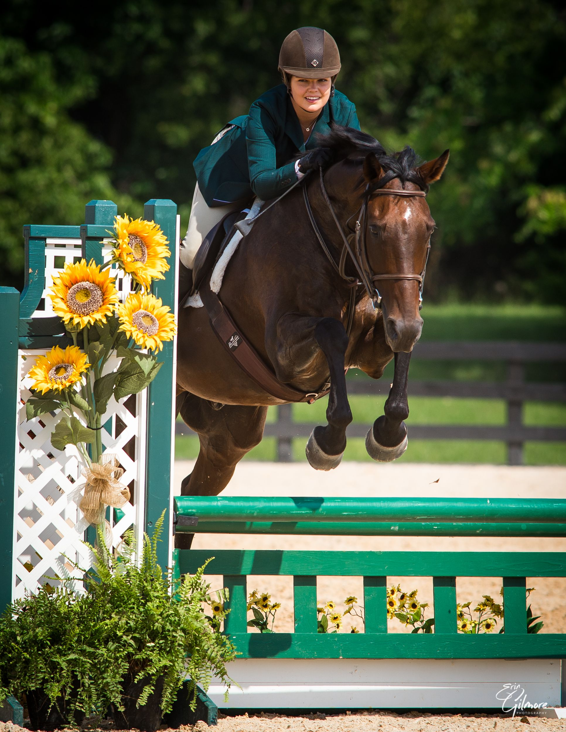 Morven Park presents the 2020 Purcellville Southern States Summer Show Series
