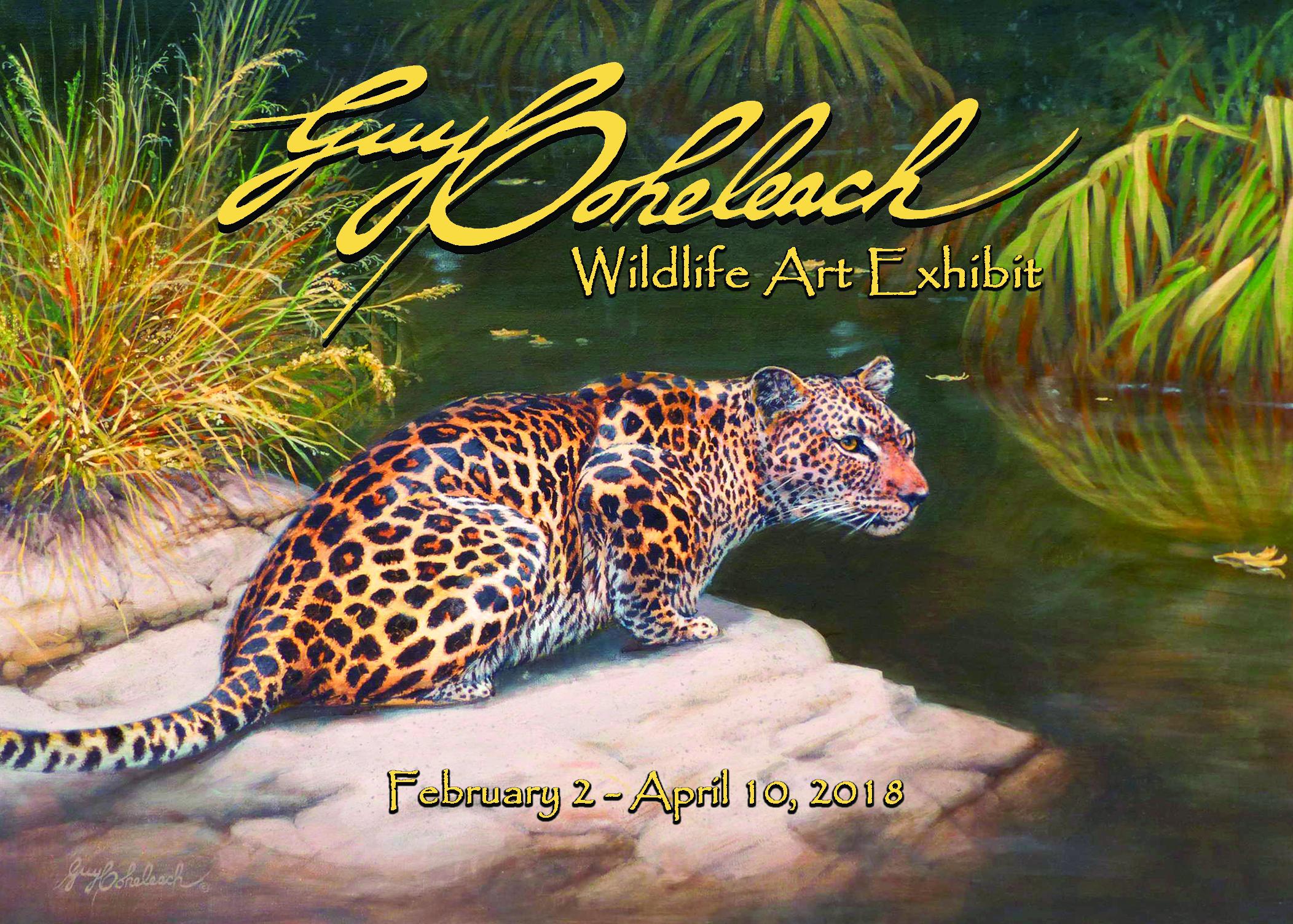 Guy Coheleach Wildlife Art Exshibit