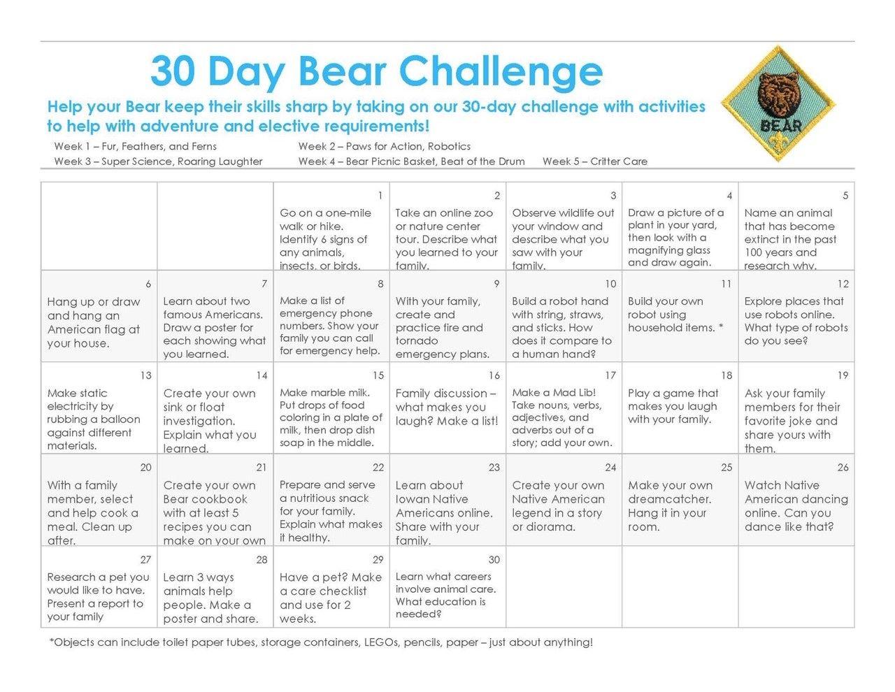 Bear (3rd Grade)