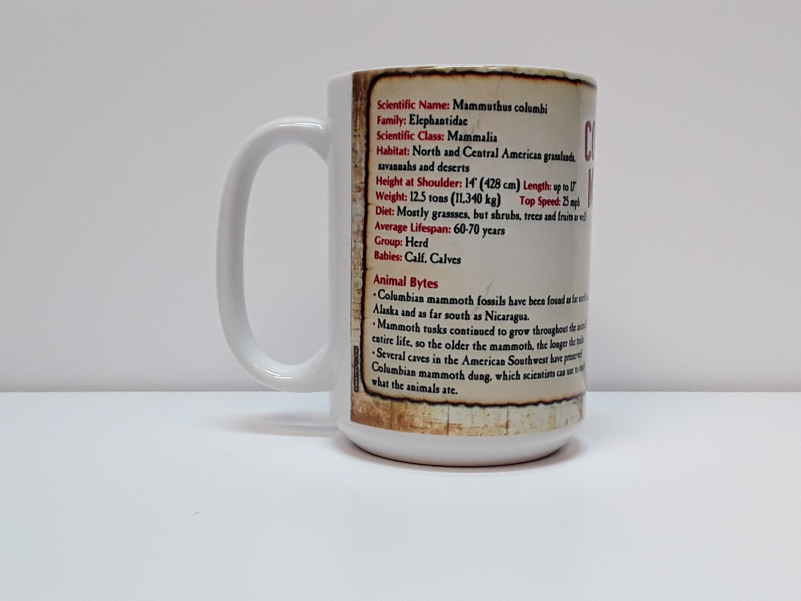 Columbian Mammoth Facts Mug