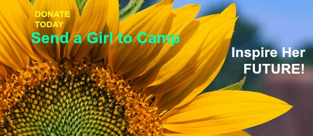 Send a Girl to Camp Inspire