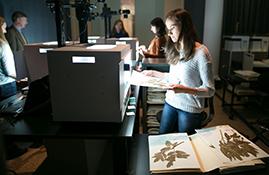 New York Botanic Garden Herbarium Exhibit