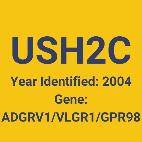 USH2C (Year Identified: 2004 | Gene: ADGRV1/VLGR1/GPR98)