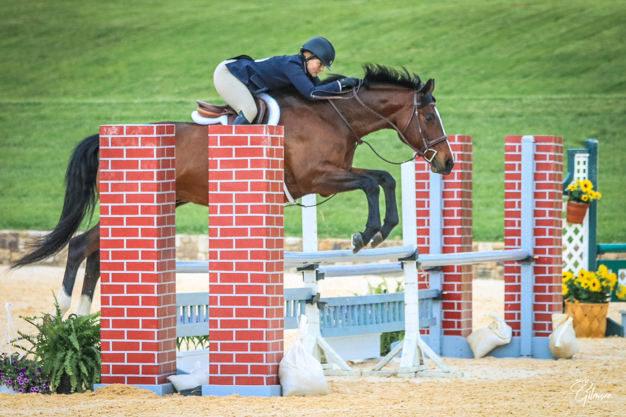 This $100 donation will go towards the floral arrangements and jump decorations at Morven Park's Summer Show Series and Horse Trials.