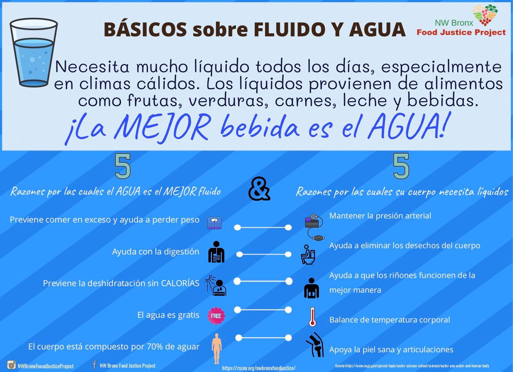 Conceptos básicos sobre fluidos y agua