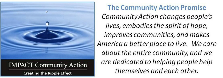 Community Action Promise