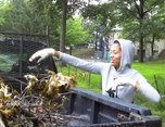 Gardening and Beautification Projects
