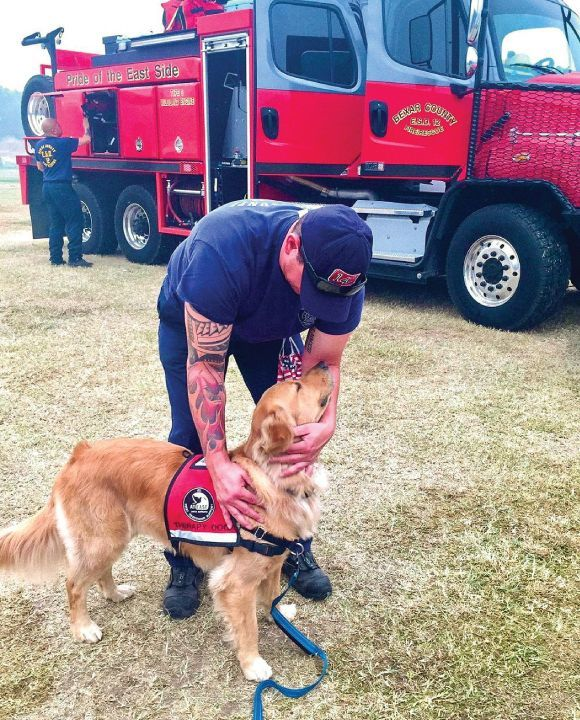 New Life K9s graduate, Donuts, provides relief to firefighters at the Creek Fire