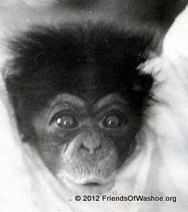 Moja as an infant