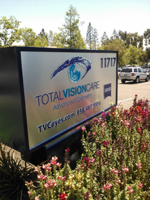 Total Vision (Day)