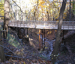 Bridging the Gap: Restoring Cedar Drive Bridge