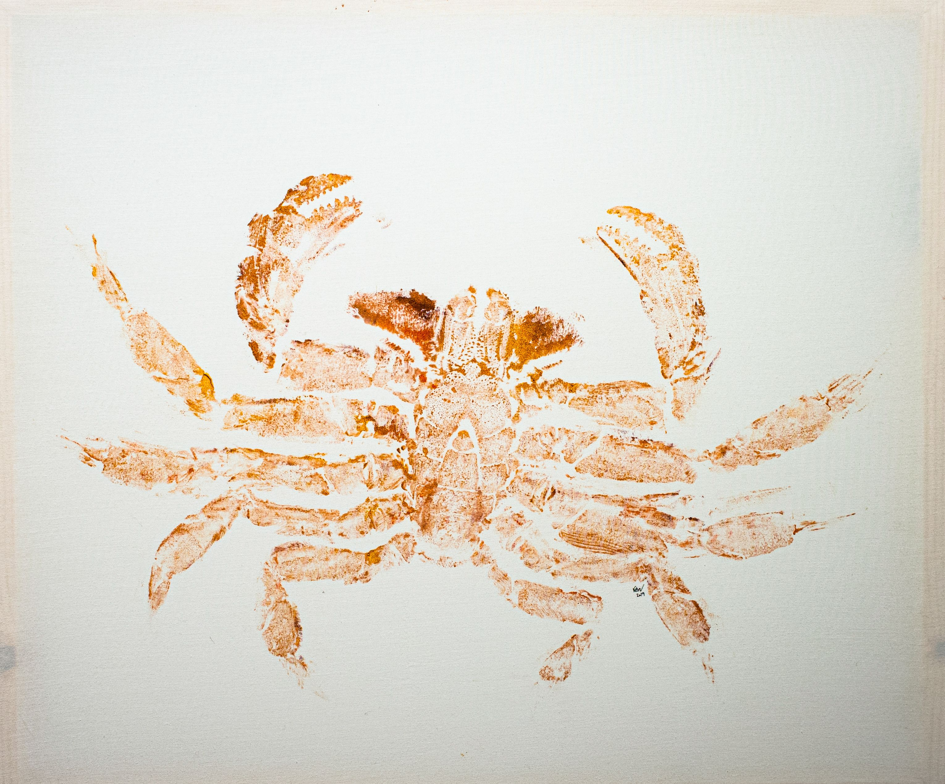 "Rachel Walton - ""Crab Belly"""