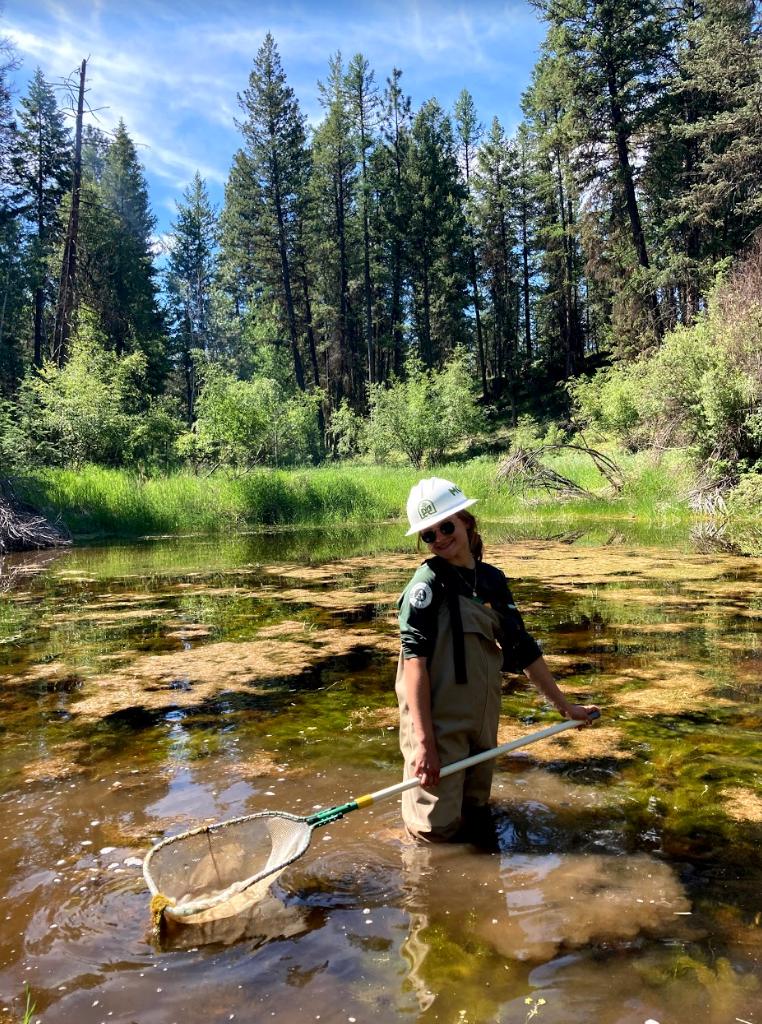 Fun Experiences with Amphibian Week