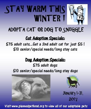 January 2017 Adoption Specials