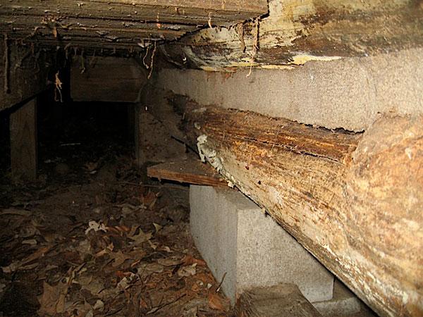 Split Logs -- 2011
