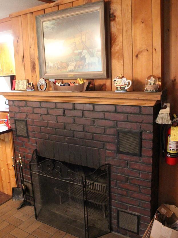 Ark Fireplace