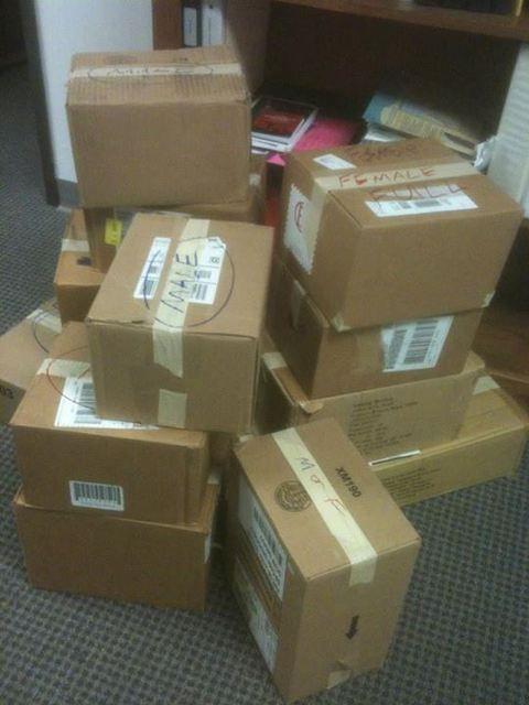 Ready for Delivery! (24 Hr H.E.L.P.)