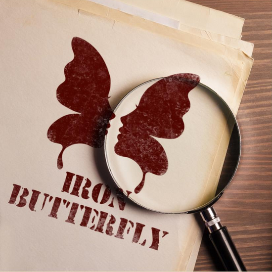 NCF CEO Laura Nelson is featured on Iron Butterfly Podcast.