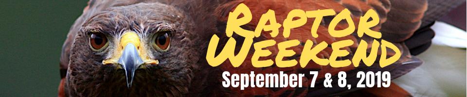 Audubon Society of Rhode Island Raptor Weekend 2019