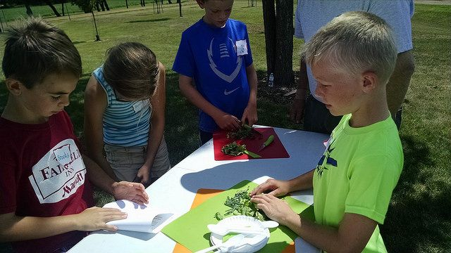 Garden Camps for kids 2015