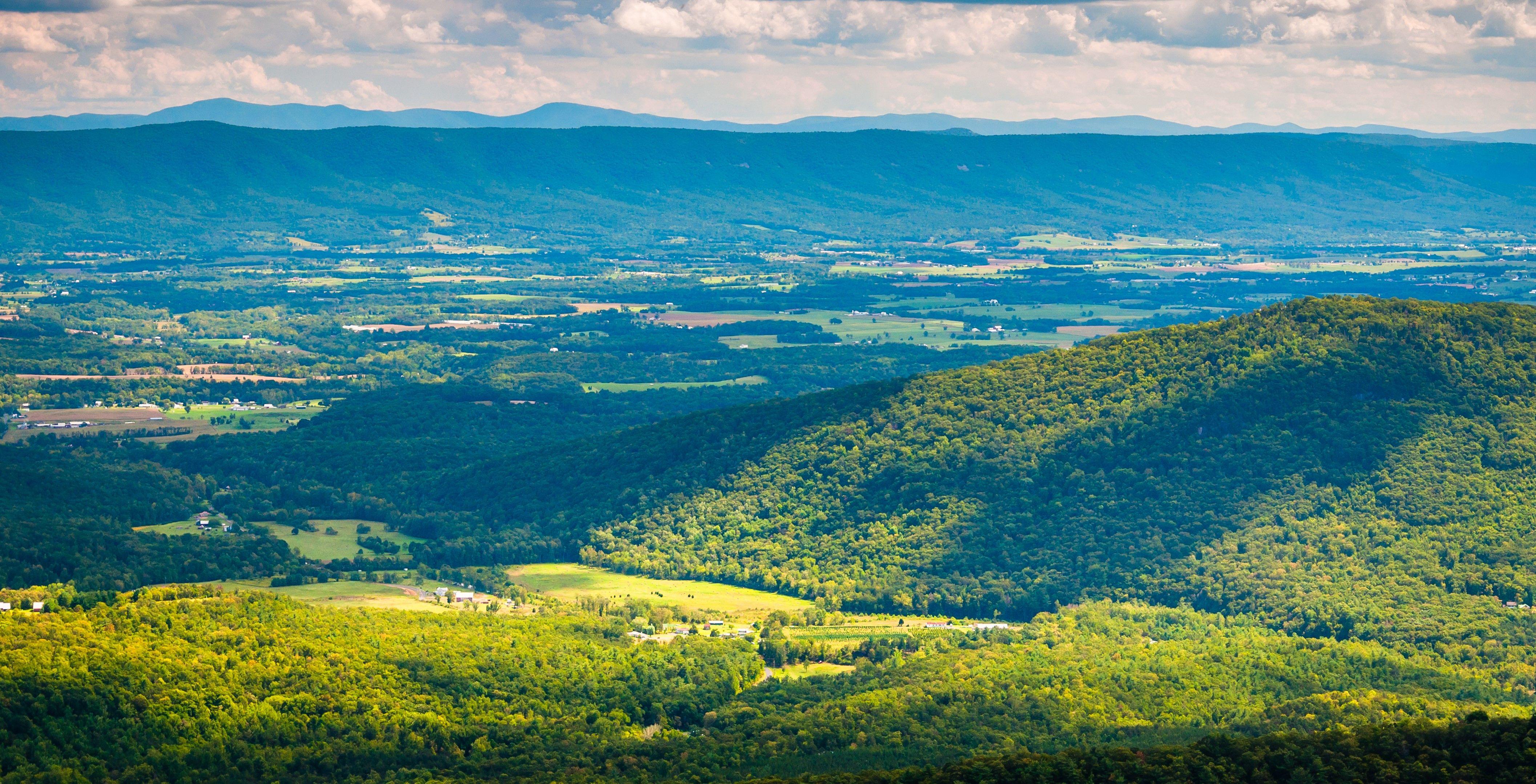 Opportunity Virginia
