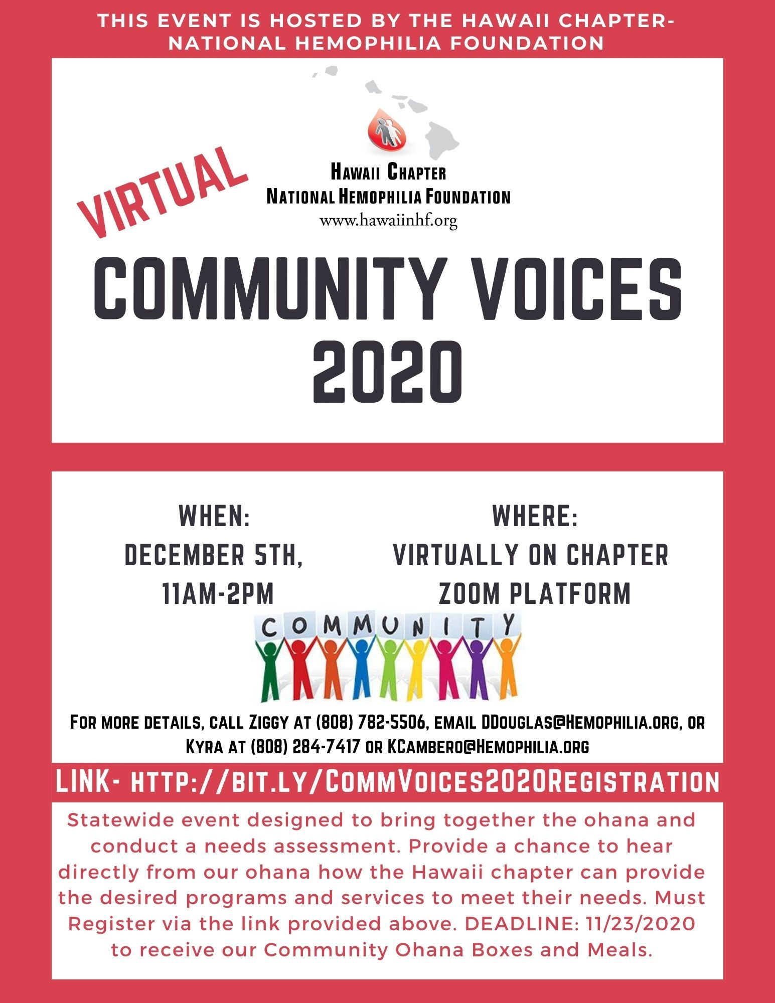 Virtual Community Voices 2020