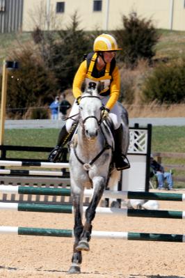 Equestrian Center Morven Park