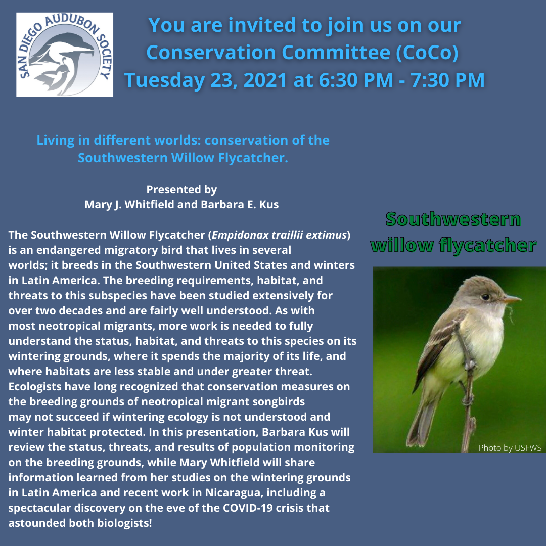 February Conservation Committee Meeting and Willow Flycatcher Presentation