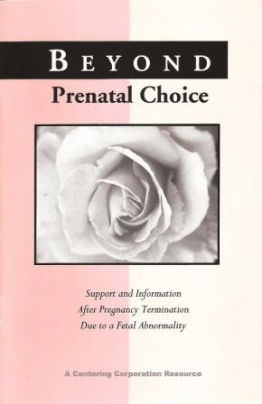 Beyond Prenatal Choice:  Support and Information After Pregnancy Termination Due to a Fetal Abnormality
