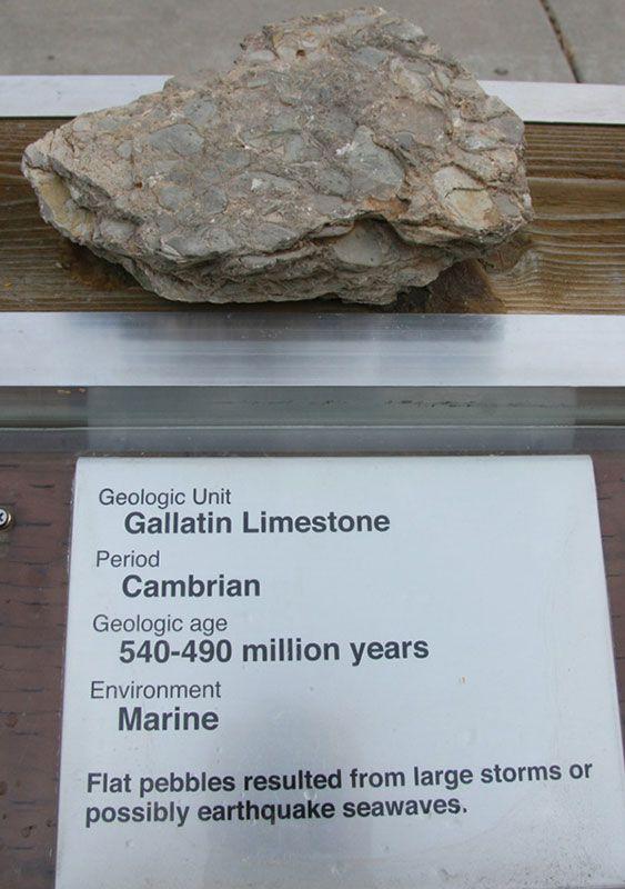 Gallatin Limestone - Cambrian