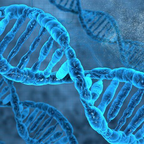 Genomics of Rare Disease