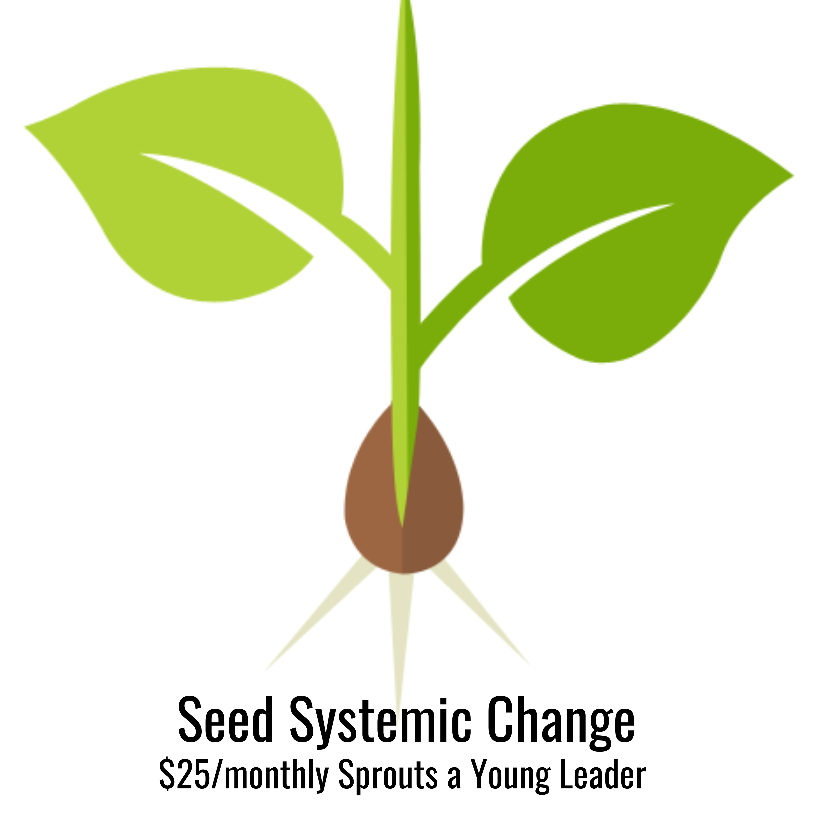 Seed Systemic Change