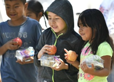 Foodbank seeks volunteers for Picnic in the Park summer children's lunch program