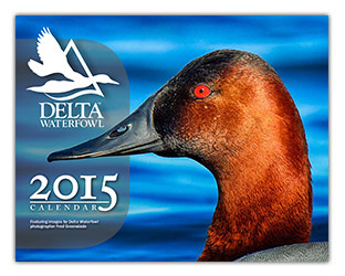 Enjoy Delta Waterfowl Photos All Year Long