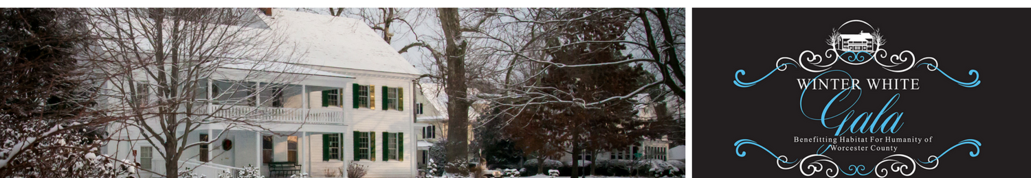 Winter White Gala at Taylor House Museum
