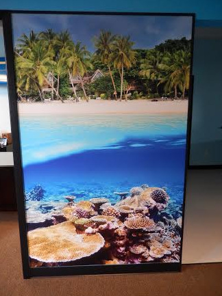 Wall Graphics for Bend OR and Central OR