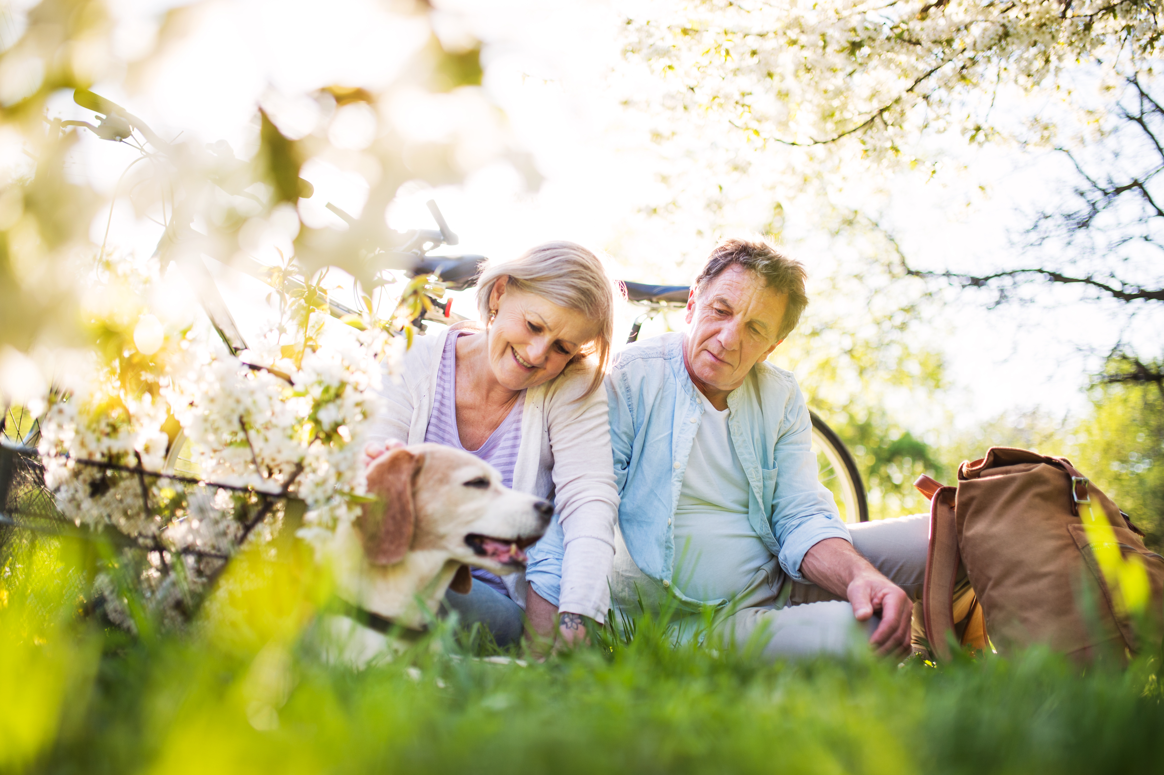Elderly white couple sitting on the ground and petting a light colored labrador.