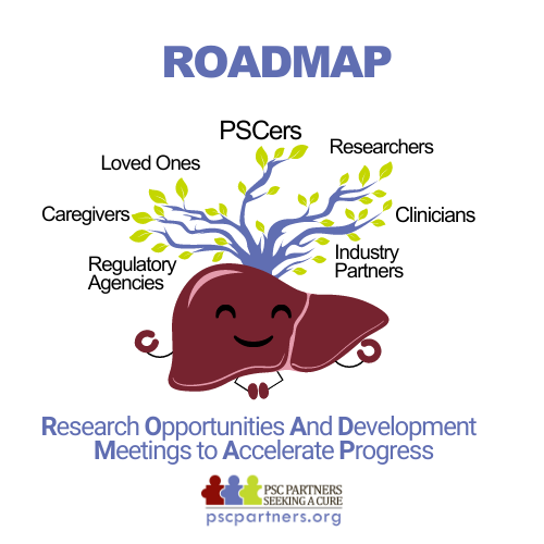 ROADMAP: Virtual Meeting - Research Objectives and Development Meetings to Accelerate Progress