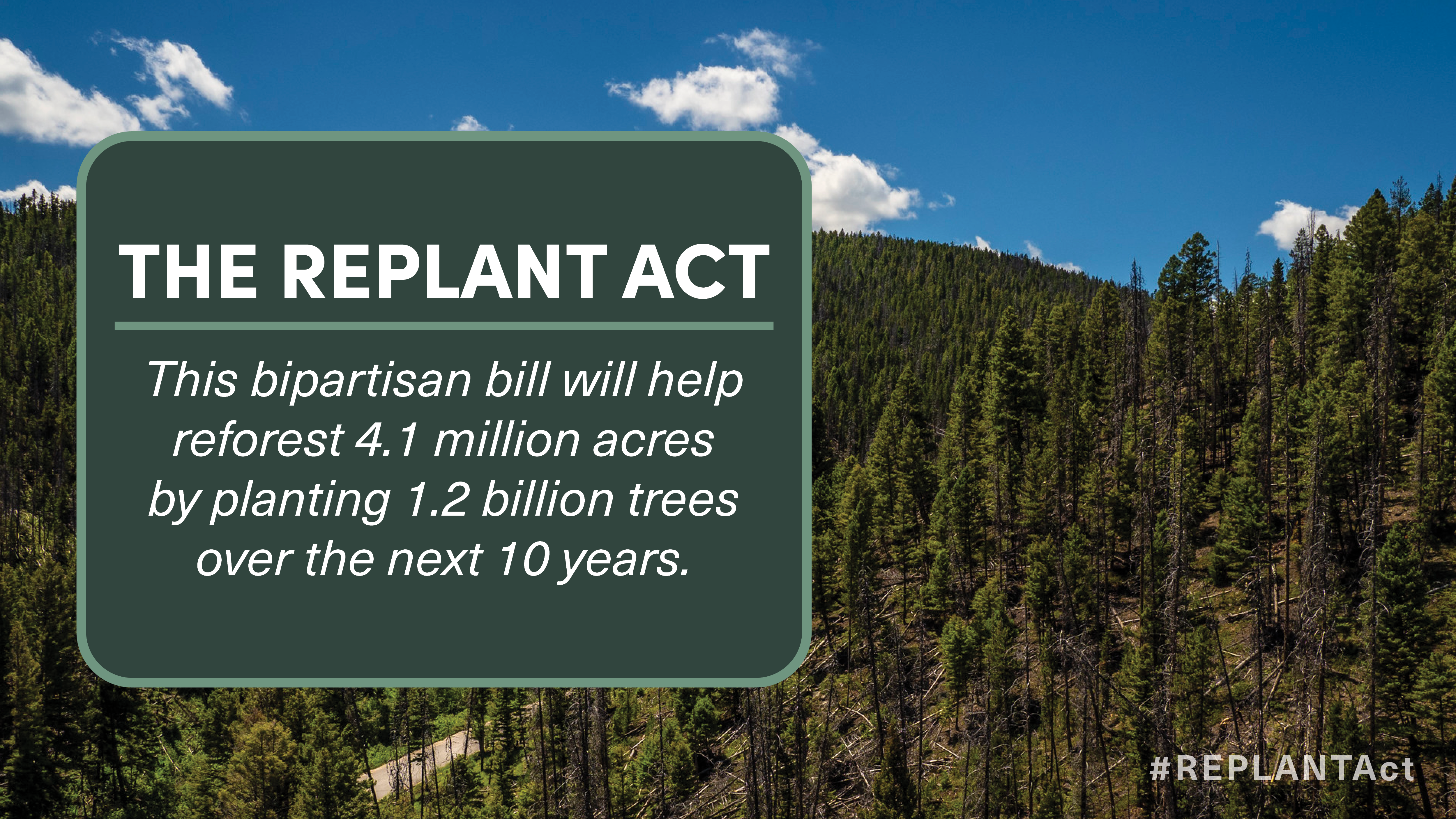 YECA Applauds Introduction of Bipartisan REPLANT Act