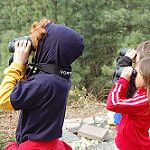 Elementary Focused