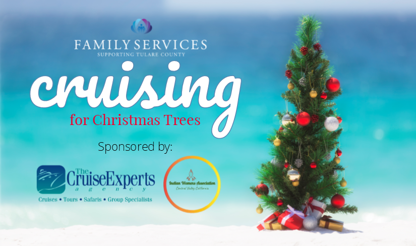 Cruising for Christmas Trees