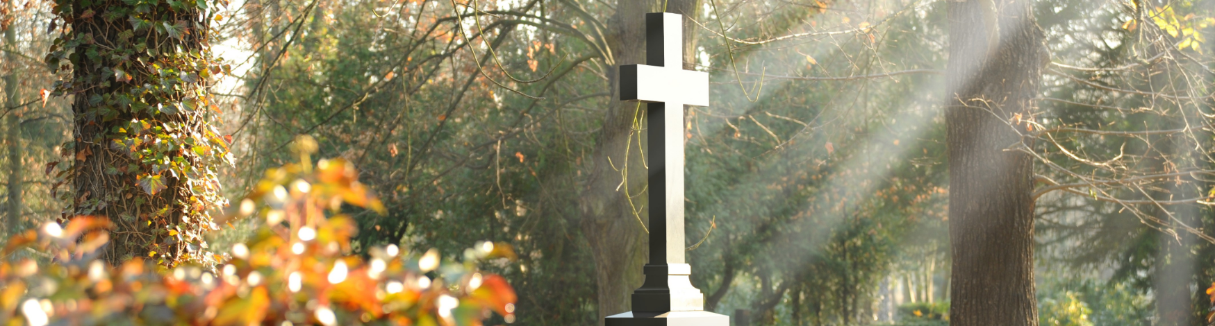Tree and Memorial Cross in sunny woods