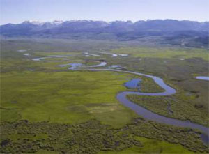 GAME & FISH DEPARTMENT ANNOUNCES PARTNERSHIP WITH THE NATURE CONSERVANCY ON WETLANDS