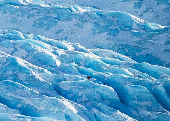 ALASKA BIENNIAL