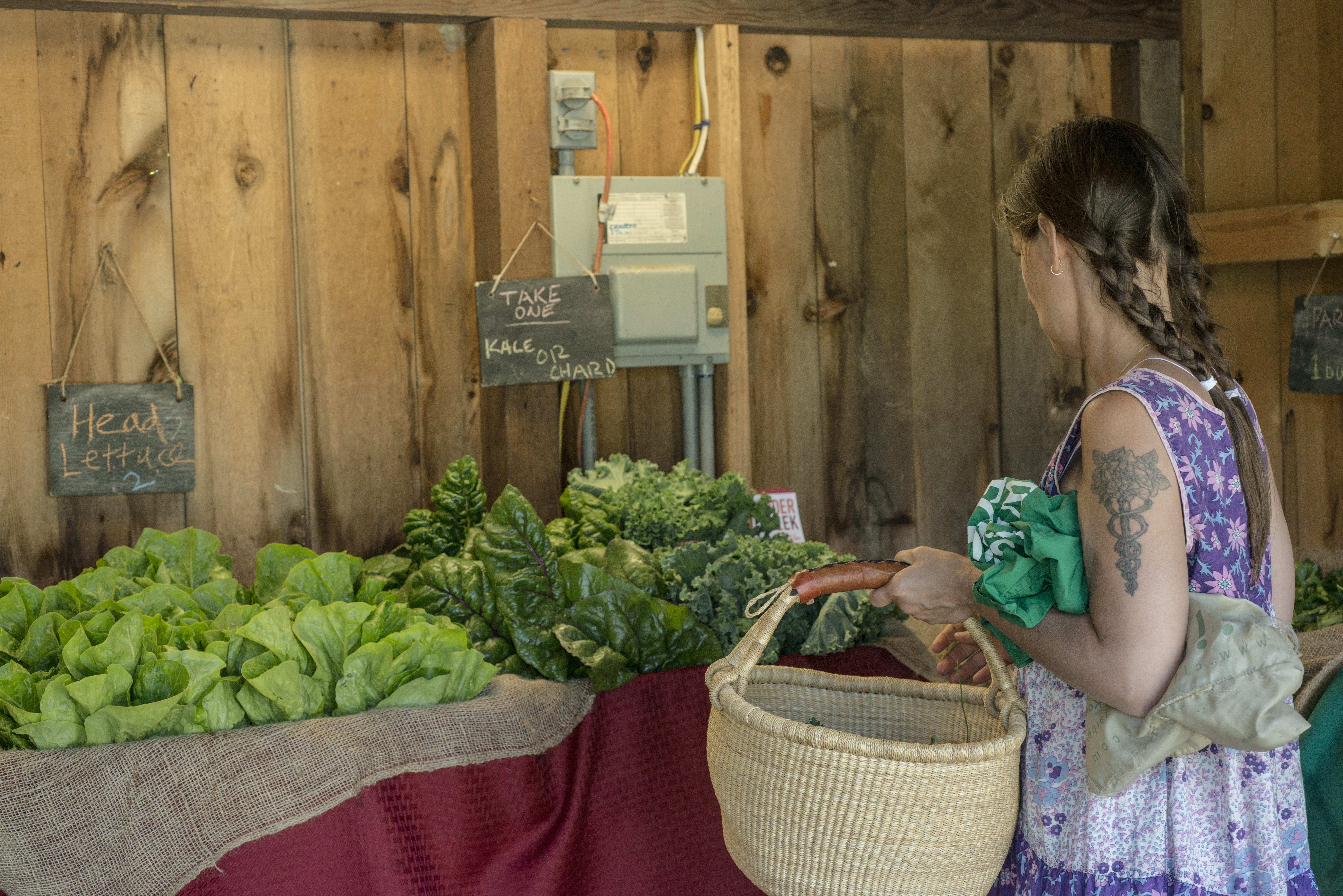Clearway Community Solar Partners with Hudson Valley Community Supported Agriculture Coalition