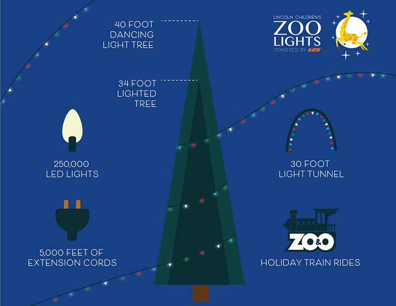 Infographic with Zoo Lights Powered by LES Facts