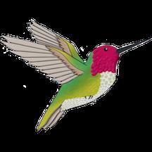 Hummingbird Supporter