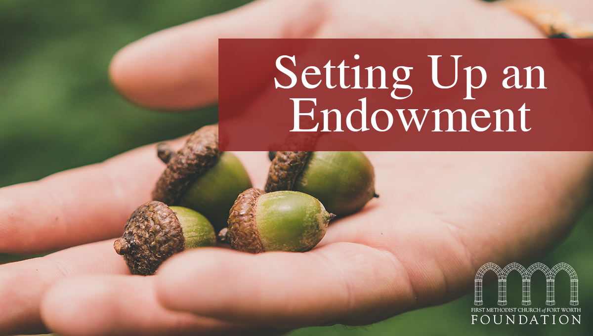 Creating a Legacy: How to Set Up an Endowment